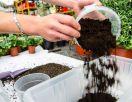 Liaflor pro zahradní a dekorační účely